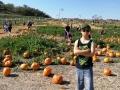 2018 10/27 Halloween Pumpkin Patch