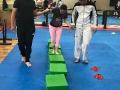 2018 5/6 Taekwondo Class