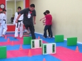 taekwondo-g